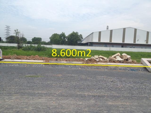 bán 8.600 m2 đất xưởng nhà nước giao thuê hồ văn tắng xã Tân Thạnh Đông Củ Chi tp HCM