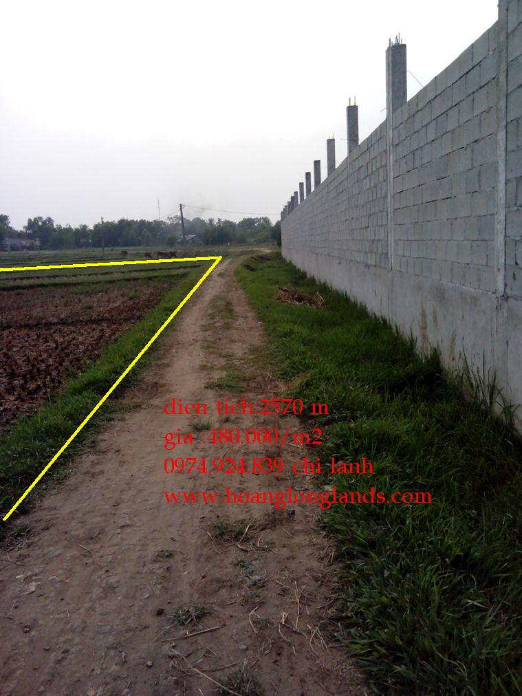 Nhà đất rẻ, đất vườn, trang trại Củ Chi 2570m2,(480 N/1m2),Xã Tân Phú Trung ,H Củ Chi ,TP Hồ Chí Minh