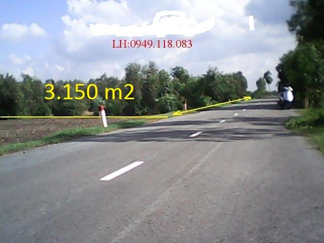 Bán 3150 m2 đất trang trại Củ Chi giá rẻ 160 ngàn /1m2