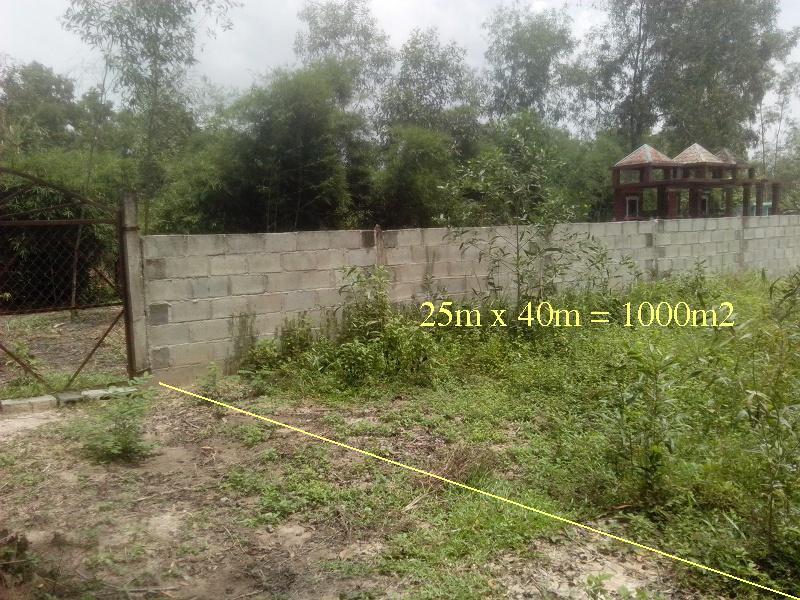 Bán đất thổ mộ làm nghĩa trang(khu vực Củ Chi)
