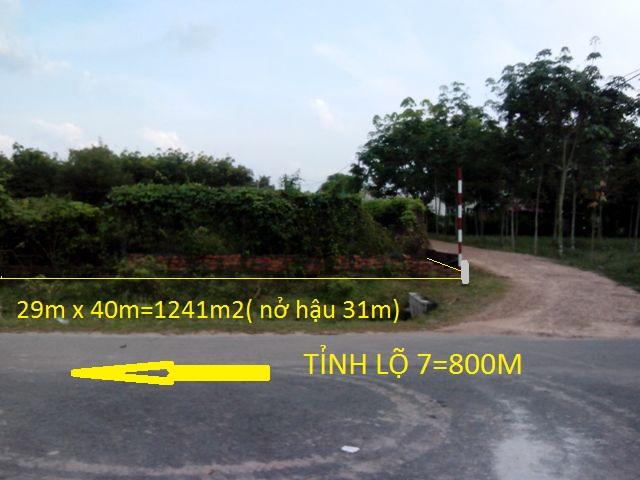 Bán 1241m2 đất 2 mặt tiền xã Thái Mỹ Củ Chi giá rẻ ( 16 triệu)