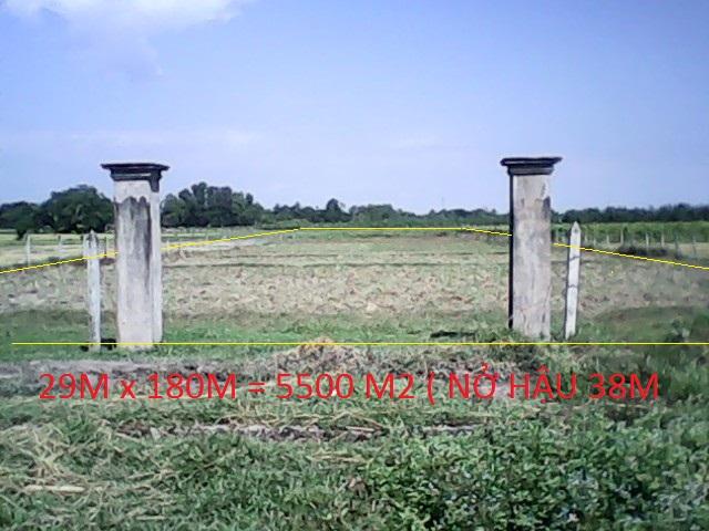 Cần bán gấp 5.500 m2 đất vườn trang trại xã Thái Mỹ Củ Chi giá rẻ 180 ngàn/1m2