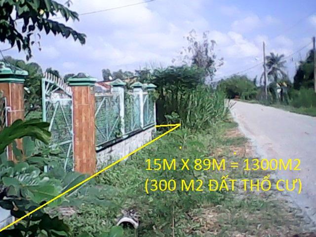 Bán 1300m2 nhà + đất thổ cư mặt tiền xã Phước Thạnh ,Củ Chi giá 800 triệu