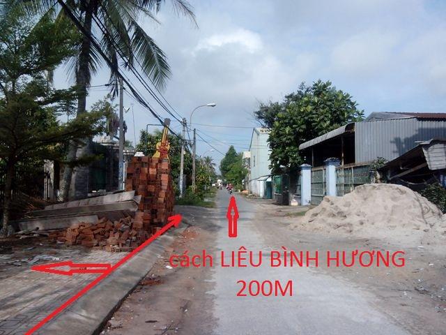 Bán 981m2 đất thổ cư khu dân cư Việt Kiều xã Tân Thông Hội  Củ  Chi giá rẻ: 1 tỷ 650 triệu