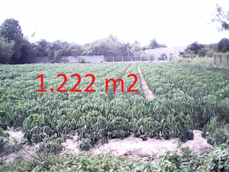 Bán 1222 m2 đất mặt tiền đường Đoàn Minh Triết,Củ Chi giá 500 triệu