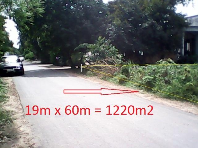 Bán đất mặt tiền đường Đoàn Minh Triết,Củ Chi 1220m2 giá 450 triệu