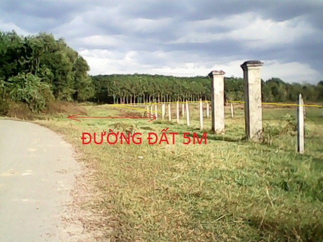 Cần bán 14.276 m2 đất vườn trang trại xã Thái Mỹ Củ Chi giá rẻ 130 ngàn/1m2